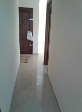 loue-appt-65m2-big-1