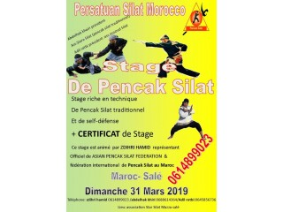 Stage de self-défense Pencak Silat