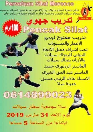 stage-de-self-defense-pencak-silat-big-1