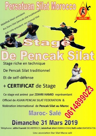 stage-de-self-defense-pencak-silat-big-0