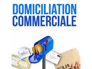 CREATION ET DOMICILIATION SOCIETES