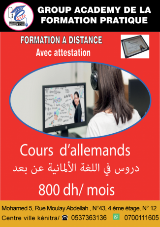 cours-dallemand-a-distance-big-0