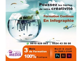 Formation d'infographie